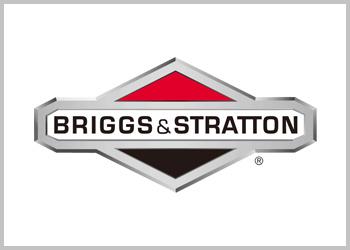Tagliaerba Briggs & Stratton